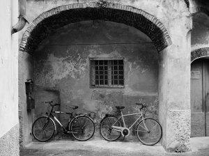 andrea bici 4